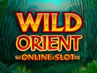 logo wild orient microgaming slot game